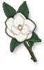 Historic and Botanic Garden Trainee Programmes Logo